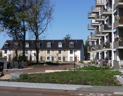 <h1>Nieuwe Sophia</h1><h2>Zandvoort</h2>